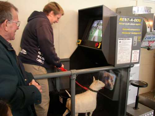 Rebecca tries out Tim Hunkin's latest amusement arcade masterpiece: rent-a-dog!